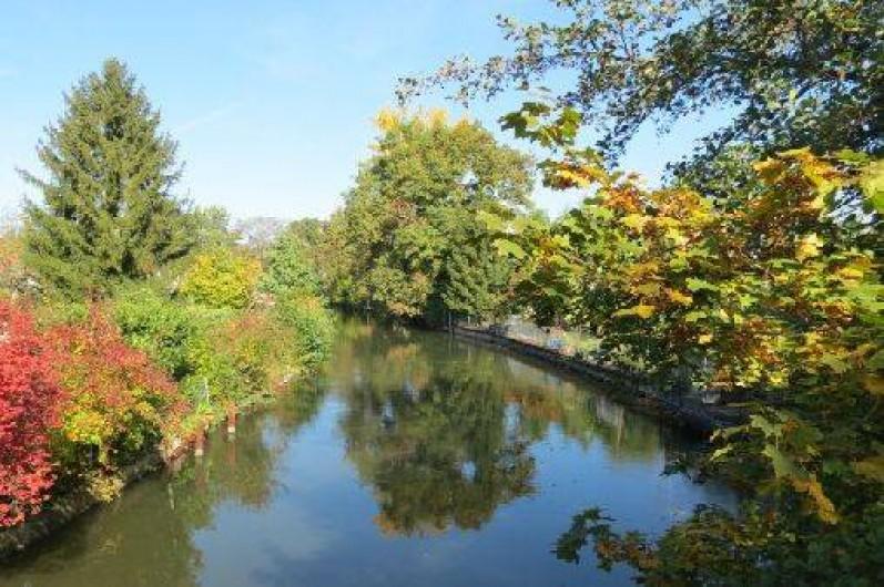 Location de vacances - Villa à Strasbourg - La rivière en automne