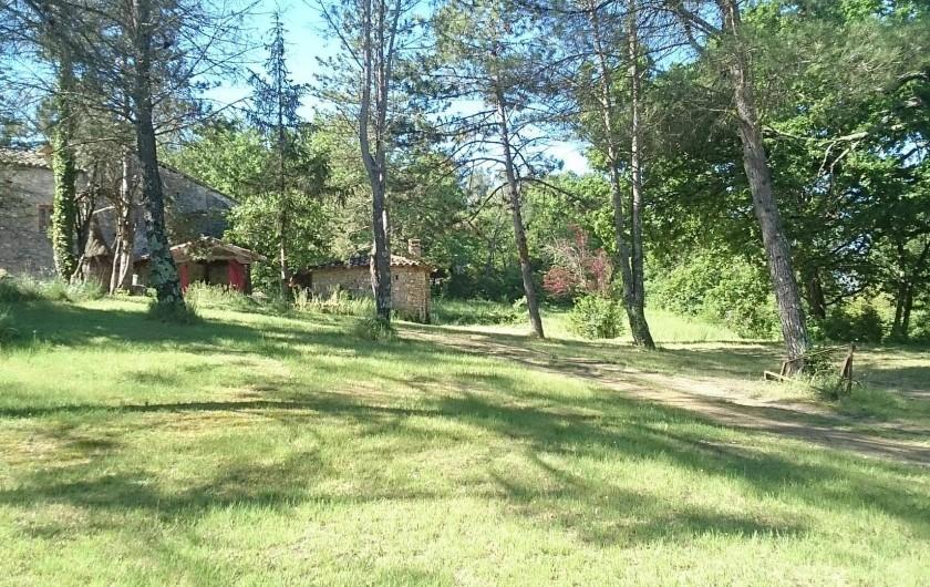 Location de vacances - Gîte à Servas - Une partie du parc près de  la piscine