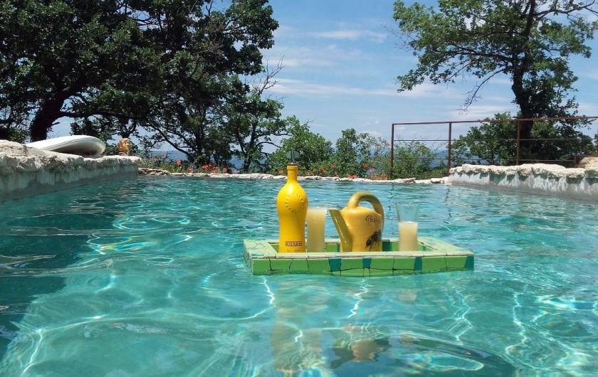 Location de vacances - Villa à Saignon - apéro dans l'eau
