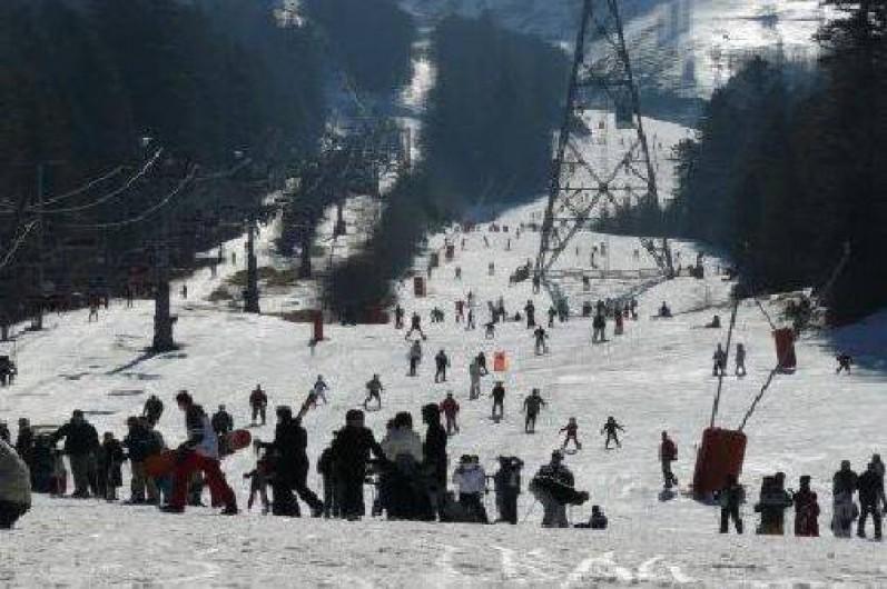 Location de vacances - Chalet à Laveissière