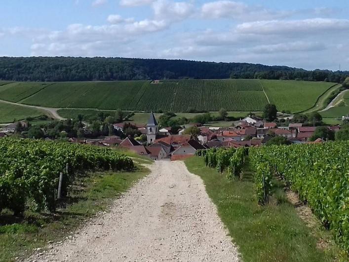 Location de vacances - Gîte à Baroville - Vue du village depuis les vignes