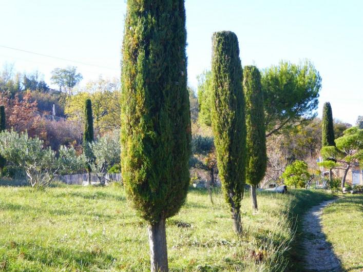 Location de vacances - Villa à Saignon - arrivée chemin