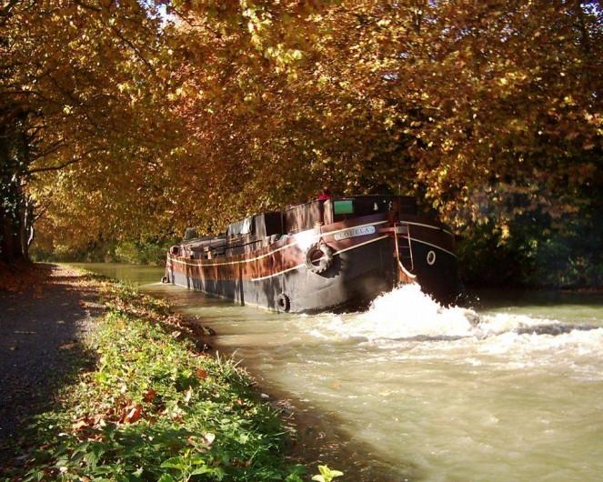 Location de vacances - Insolite à Villedubert - En navigation !