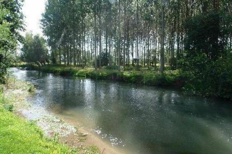 """Location de vacances - Gîte à Berck - La rivière """"l'Authie"""" et notre peupleraie."""