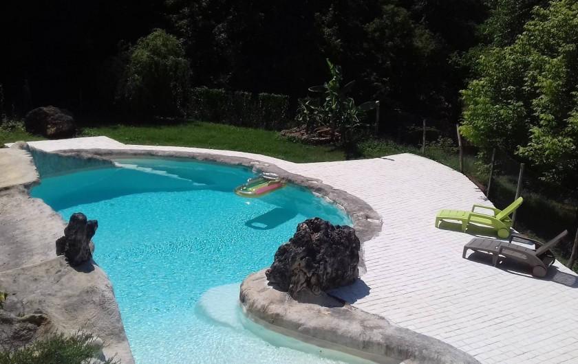 Location de vacances - Gîte à Tursac - piscine creusée dans la roche (profondeur grand bain 2m)