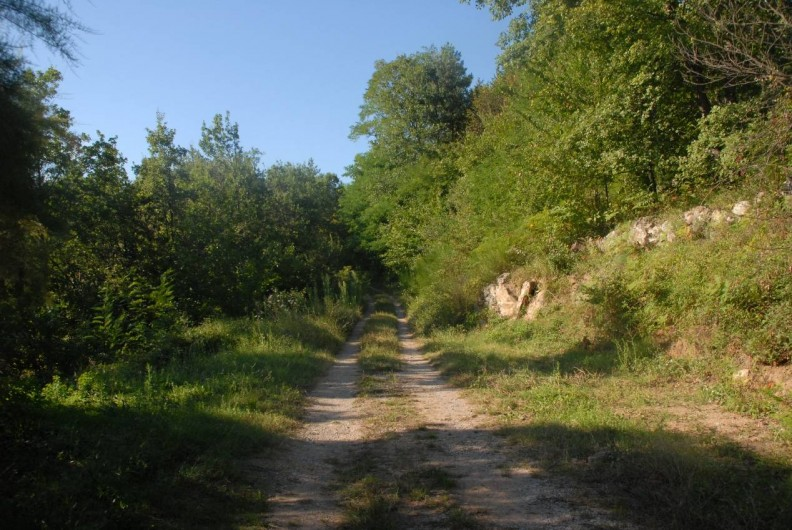 Location de vacances - Maison - Villa à Vinezac - Chemin d'acces