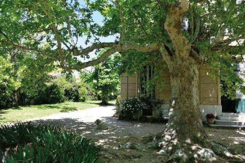Location de vacances - Maison - Villa à Marseille