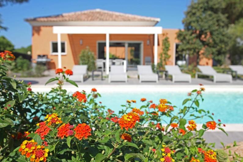 Location de vacances - Villa à Calvi - Villa 4 chambres avec piscine individuelle et privée - 1000m² de jardin