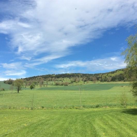 Location de vacances - Gîte à Vailhac - Vue sur la campagne environnante