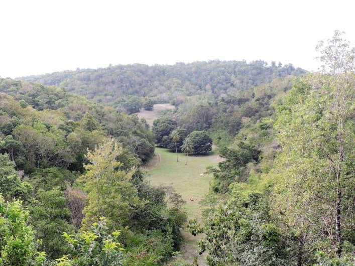 Location de vacances - Villa à Le Gosier
