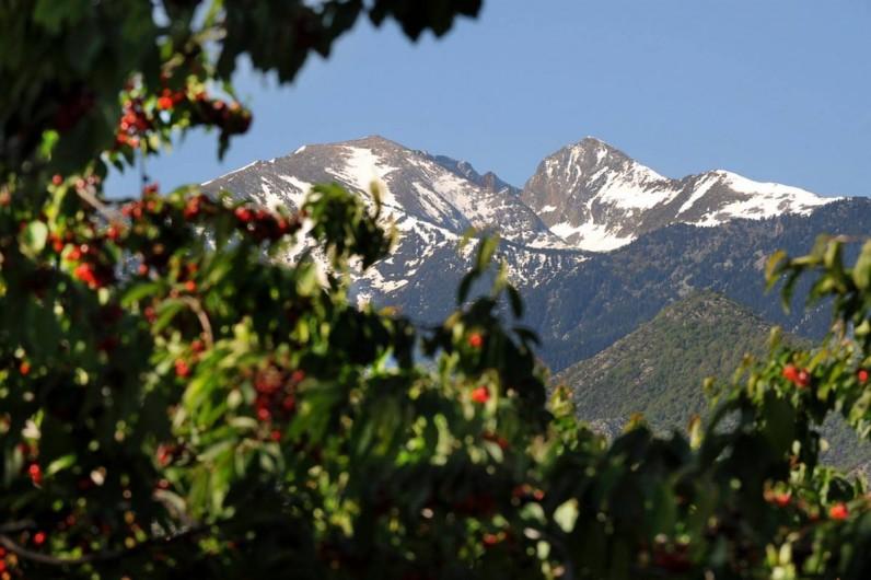 Location de vacances - Gîte à Rigarda - le mont Canigou vu du gîte  altitude :2784 m