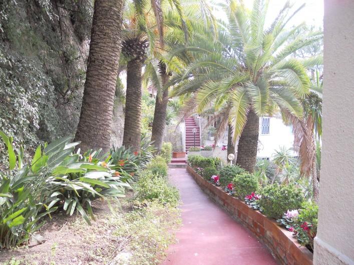 Location de vacances - Appartement à Ospedaletti - jardin de la maison