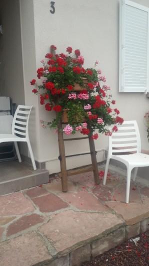 Location de vacances - Chambre d'hôtes à Eguisheim - Extérieur fleuri