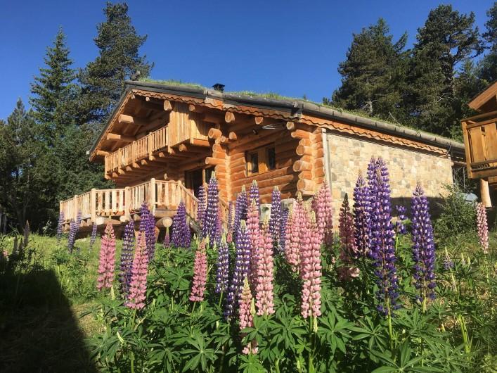 Location de vacances - Chalet à Bolquère - La face Sud du chalet en été