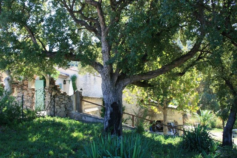 Location de vacances - Mas à Sainte-Maxime - le jardin