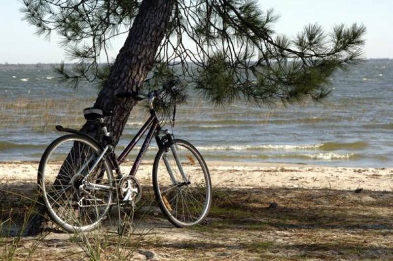 Location de vacances - Maison - Villa à Hourtin - Cottages Hourtin*** Lac d'Hourtin