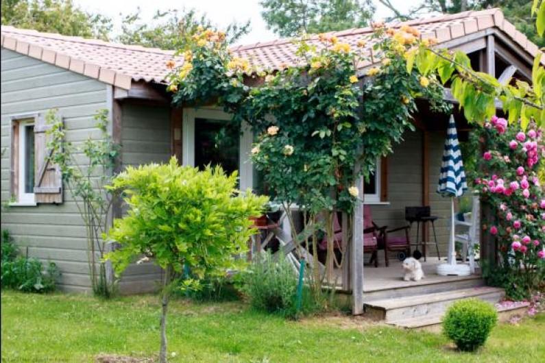 Location de vacances - Gîte à Jonzac