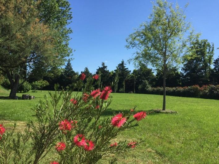 Location de vacances - Villa à Avignon - jardin - Garden Au Soleil Ocre Avignon