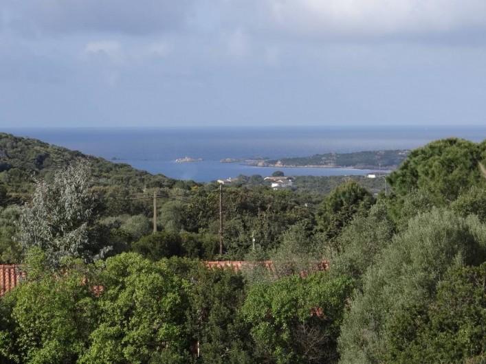 Location de vacances - Appartement à Pianottoli-Caldarello - vue mer terrasse
