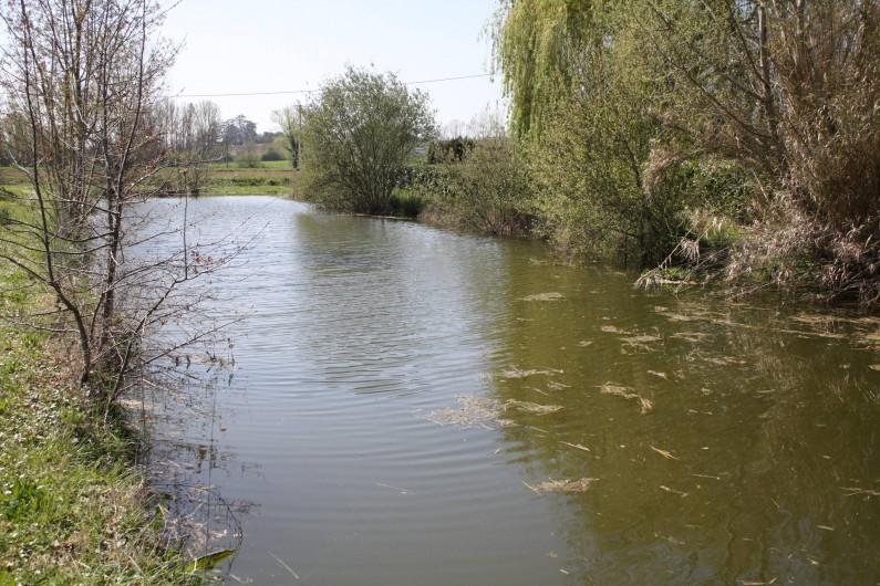 Location de vacances - Gîte à Lafrançaise - Sur notre exploitation le petit lac ou l'on peut pêcher.