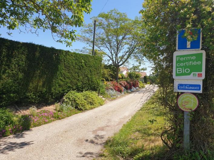 Location de vacances - Gîte à Lafrançaise - Notre chemin privé, arrivée du gîte.