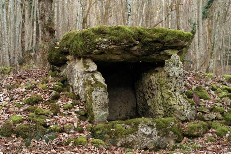 Location de vacances - Gîte à Chantraines - Dolmen à 2,5 km du gîte