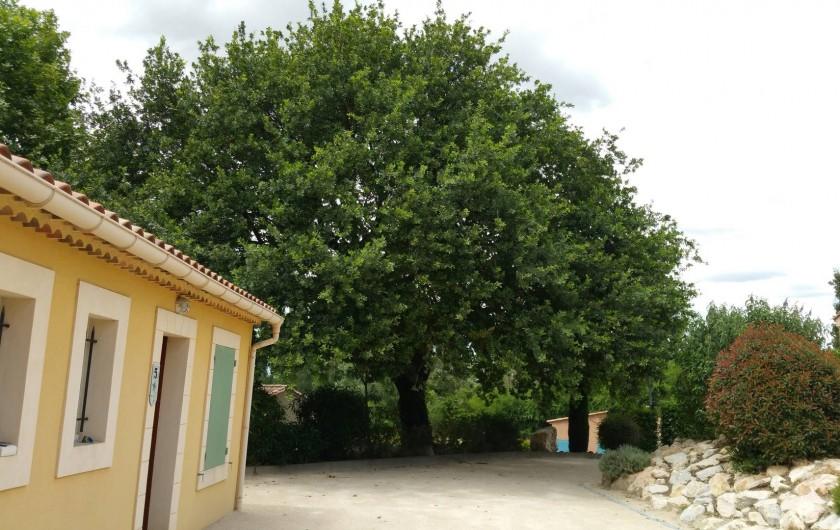 Location de vacances - Maison - Villa à Loriol-du-Comtat - Jeu de boucles à l 'ombre du vieux chêne