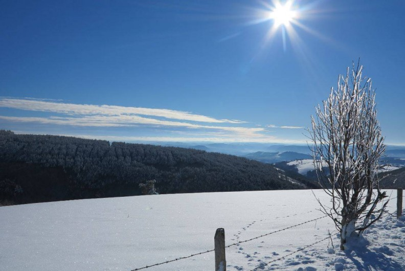 Location de vacances - Gîte à Saint-Pierre-de-Nogaret - Vue par une après-midi d'hiver...
