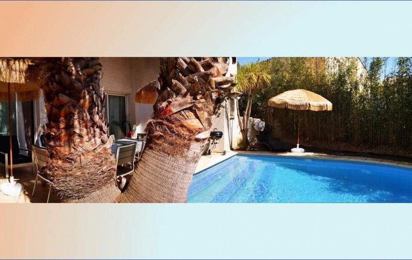 Location de vacances - Villa à Le Grau-du-Roi - Terrasse Principale avec 2 palmiers géants ( washingtonia ) et piscine.