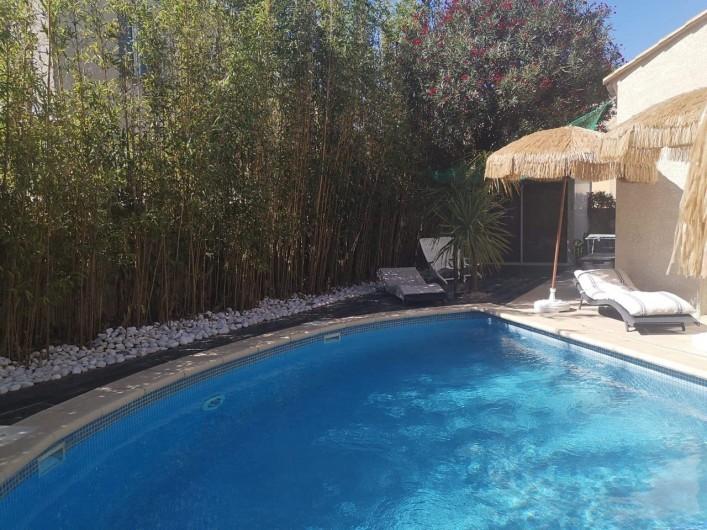 Location de vacances - Villa à Le Grau-du-Roi - Piscine entourée de grands bambous