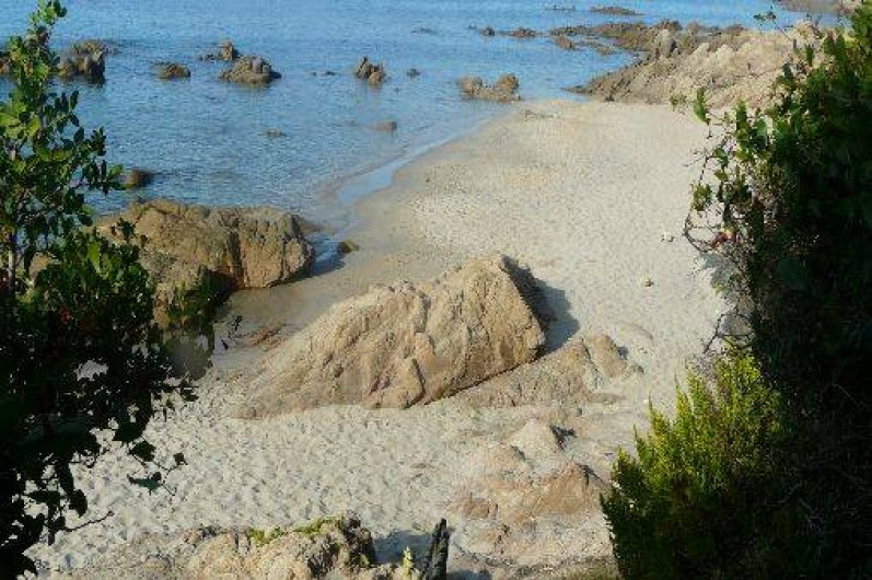 Location de vacances - Villa à Ajaccio -             PLAGE