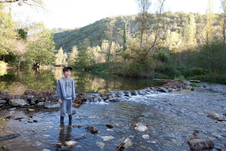 Location de vacances - Chalet à Rieupeyroux - Le viaur, affluent de l'Aveyron