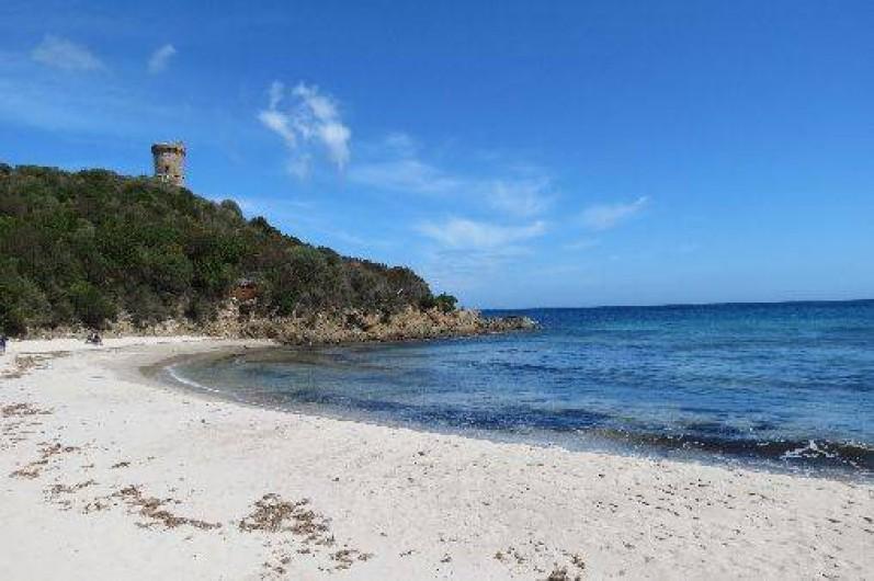 Location de vacances - Villa à Conca - Fautéa, sa plage et sa tour accès par le maquis en 30 mn ses odeurs !
