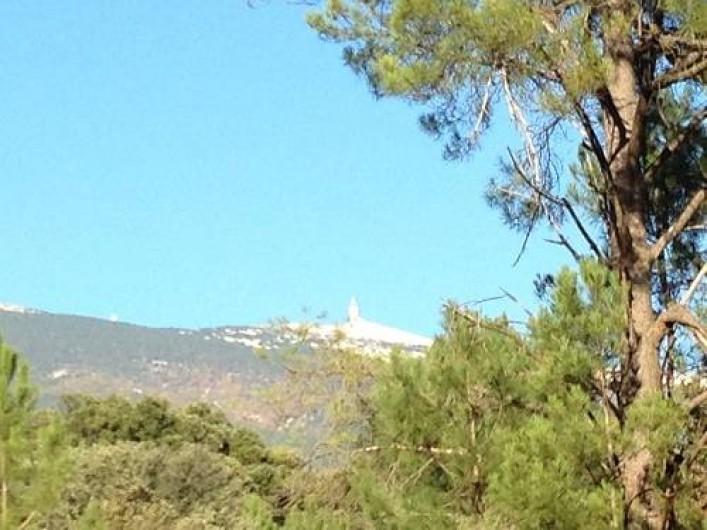Location de vacances - Villa à Bédoin - vue sur le ventoux à partir de la cuisine