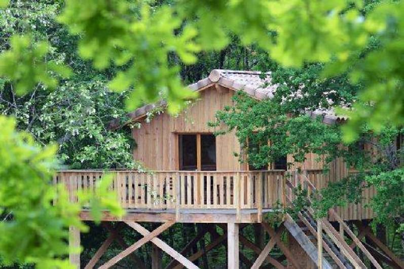 Location de vacances - Cabane dans les arbres à Cabanac-et-Villagrains