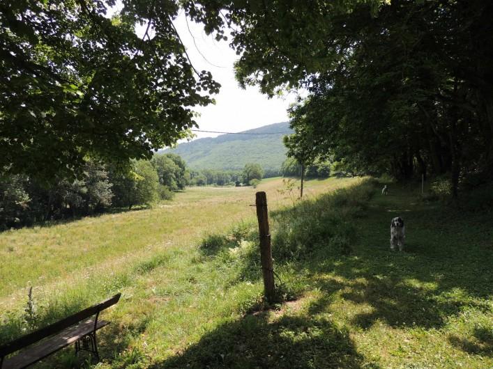 Location de vacances - Mas à Courniou - Devant la maison, les champs