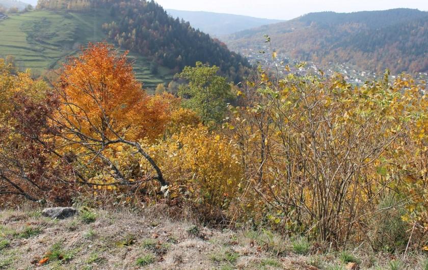 Location de vacances - Chambre d'hôtes à Le Menil - couleurs d automne