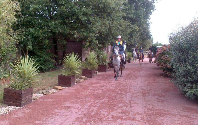 Location de vacances - Gîte à Sallertaine - départ de randonnée à cheval, pour tout niveau équestre