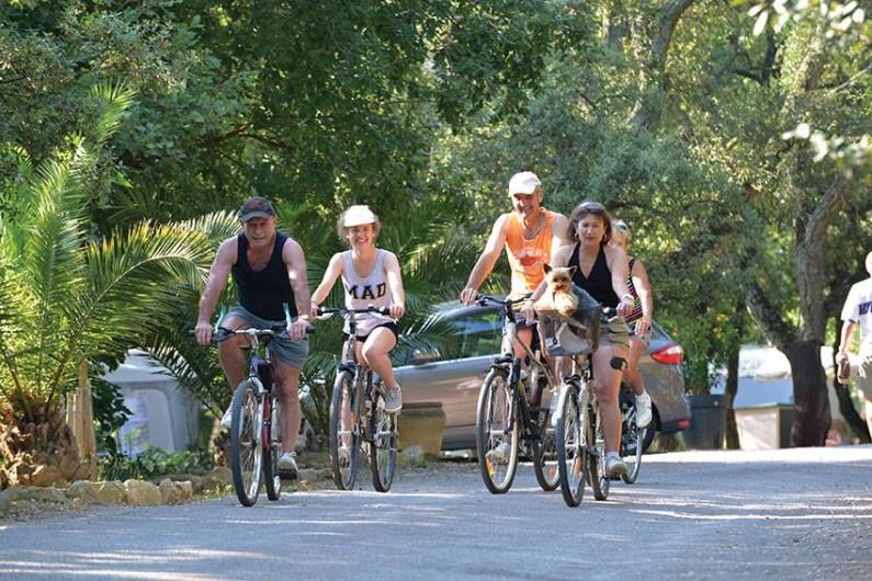 Location de vacances - Camping à Laroque-des-Albères - Services : location de vélos