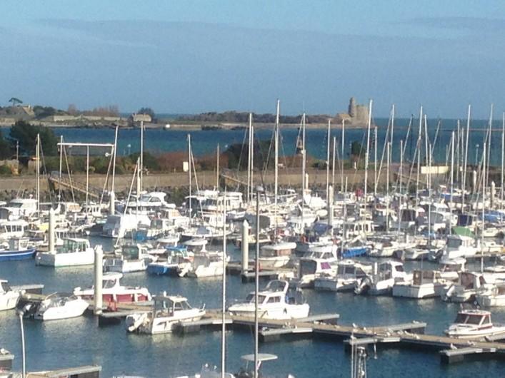 Location de vacances - Studio à Saint-Vaast-la-Hougue - Vue du port de plaisance ( vue aussi de la terrasse