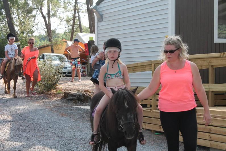 Location de vacances - Camping à Joyeuse - Ballade à poney dans le camping