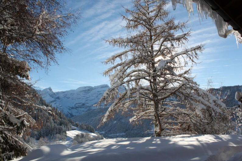 Location de vacances - Chalet à La Comballaz - vue du salon sur le Glacier des Diablerets
