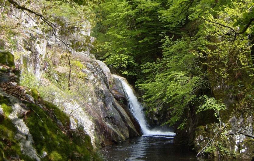 Location de vacances - Gîte à Saint-Hilaire-les-Courbes - Prenez un pique nique près de cette cascade....