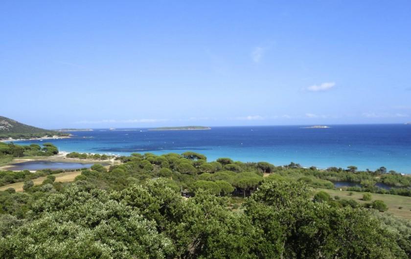 Location de vacances - Maison - Villa à Porto-Vecchio - Plage de Palombaggia à 950 m