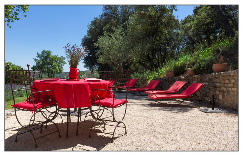 Location de vacances - Mas à Saint-Restitut - L'espace barbecue et solarium