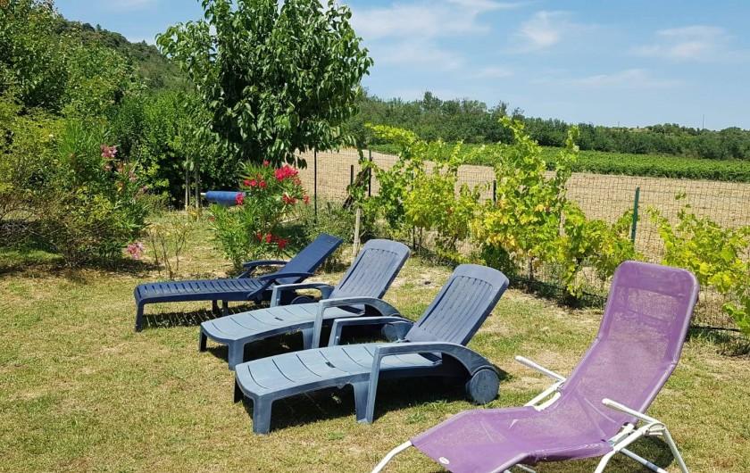 Location de vacances - Gîte à Rieux-en-Val - Coin repos avec vue sur les vignes et la piscine