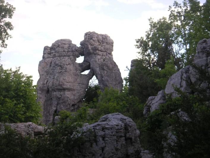 Location de vacances - Villa à Les Salelles - le lion et l'ours randonnée au bois de païolive