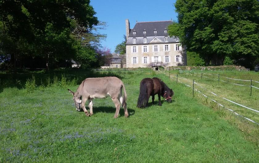 Location de vacances - Château - Manoir à Tréguier - mulane et tornado dans le parc de kerhir
