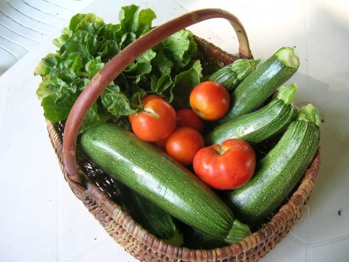 Location de vacances - Château - Manoir à Tréguier - vous viendrez chercher les legumes du potager en saison