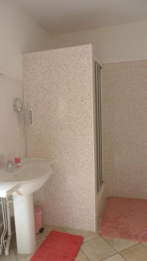Location de vacances - Gîte à Brioude - salle d'eau des chambres Terre et Eau